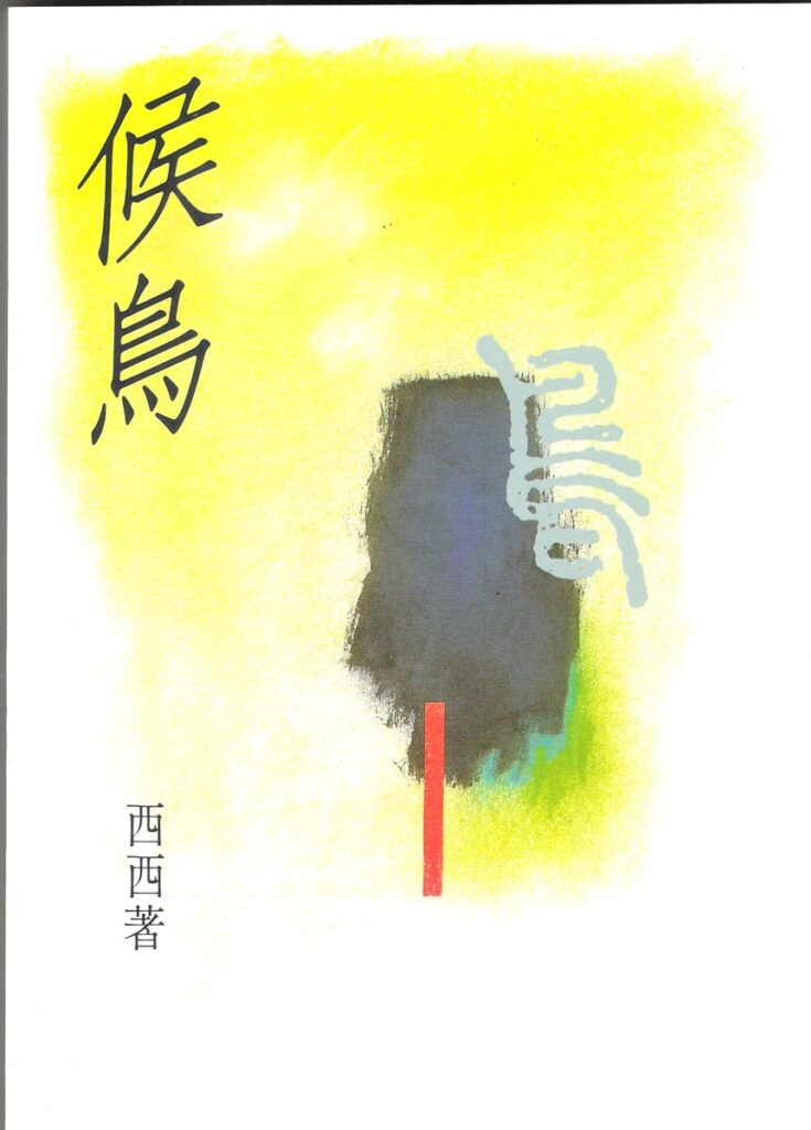 The book cover of Birds of Passage (1991).